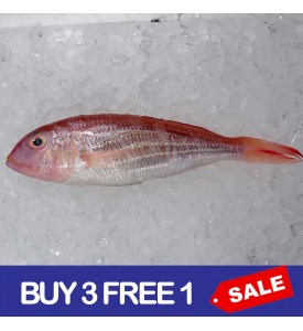 Threadfin Bream / Kerisi per kg (BUY 3 FREE 1) [SEASONAL]